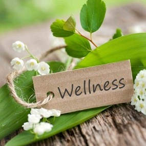 Wellness tag